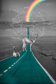 arte-voir-image-igor-dantas-rafa-eleuterio-deserto-do-atacama-digitalarte (1)